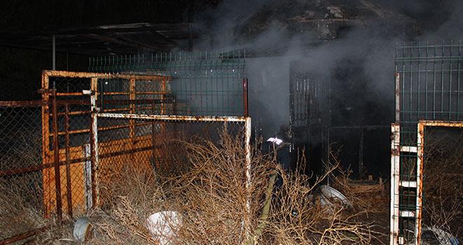 Karaman'da depoda bulunan arı kovanları yandı