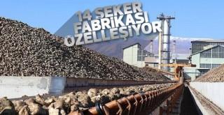 Türkiye'nin şeker fabrikaları özelleştiriliyor