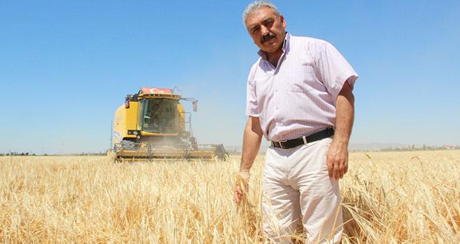 """Ziraat Odası Başkanı Muğlu: """"Kazanamayan çiftçi buğday ekimini bırakıyor"""""""