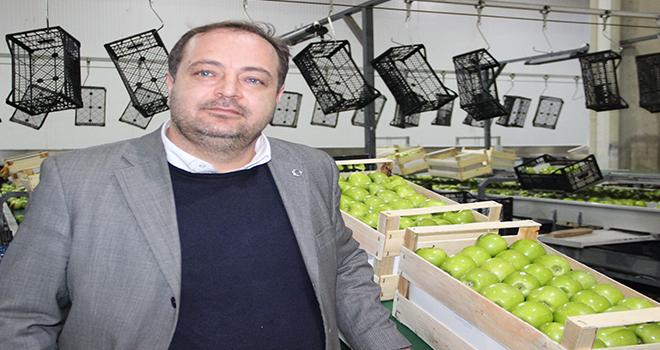 Karaman'da elmanın depo çıkış fiyatı 1,5 ila 2,5 lira arasında değişiyor
