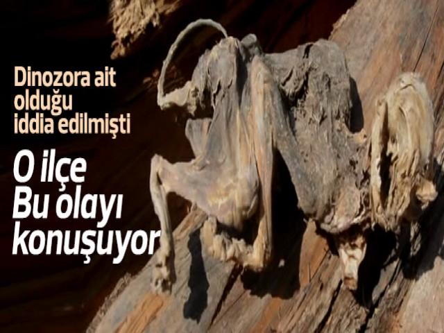 Dinazor kalıntısı olduğu iddia edilmişti.